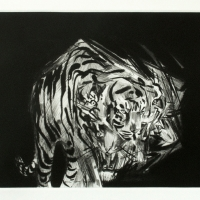 Erik Olson, White Tiger, 2011