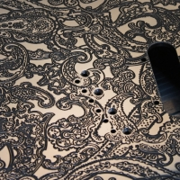 Paisley_close-detail-03-1024x714.jpg